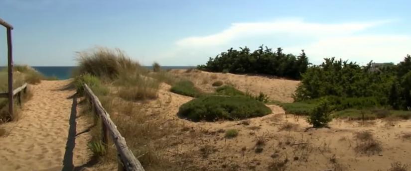 Campomarino di Maruggio dune