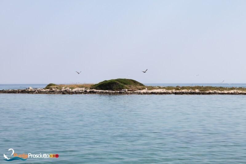 Isola della Malva