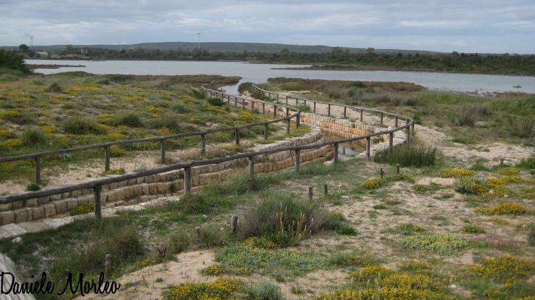 La Salina dei Monaci Punta Prosciutto Situata nell estremo nord occidentale della provincia di Lecce 1