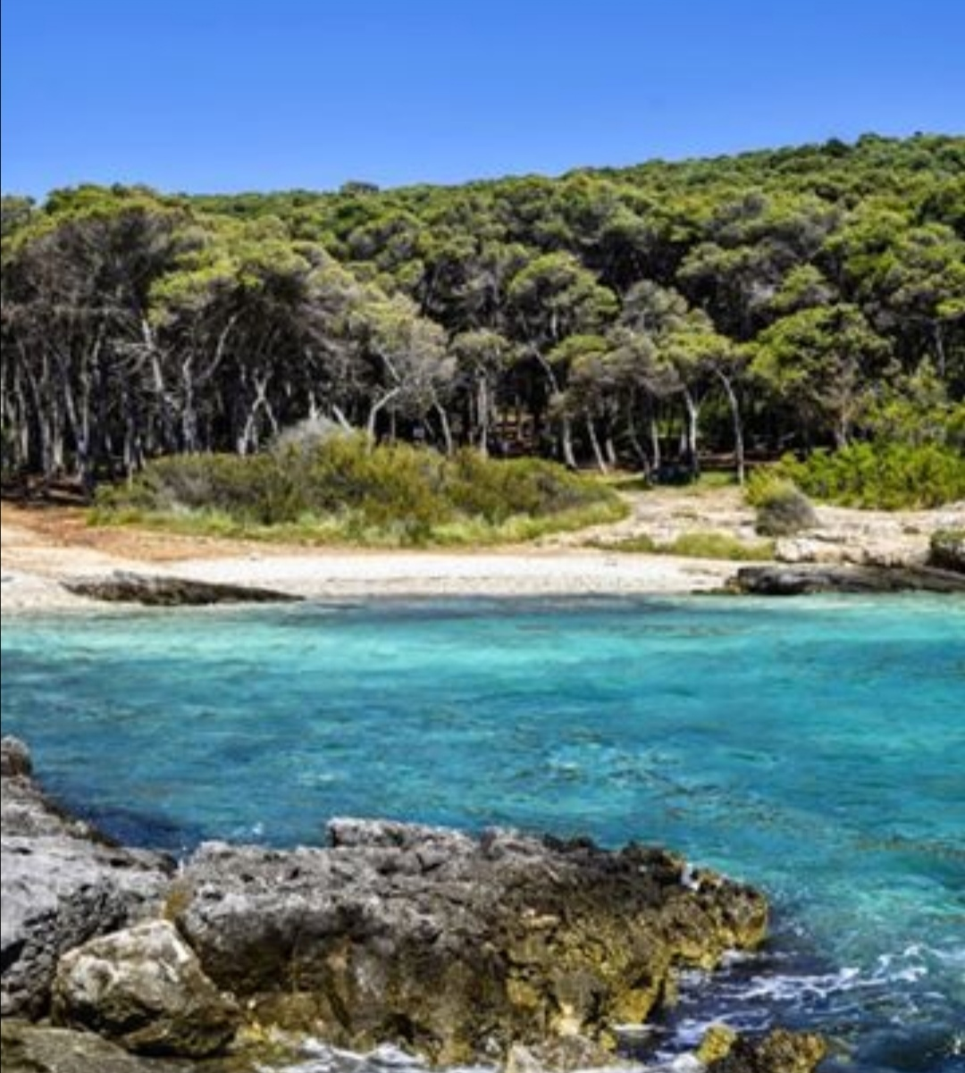 Porto selvaggio spiaggia
