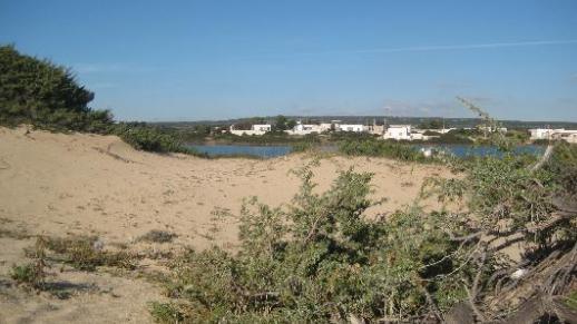 Spiaggia Salina dei Monaci Manduria