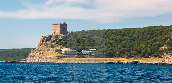 Torre dell Alto porto cesareo