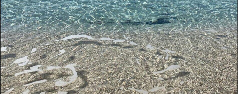 Mare punta prosciutto