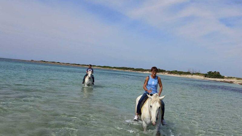 Escursione cavallo punta prosciutto