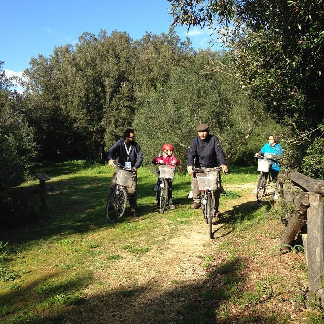Boscocuturi passeggiata bosco bici