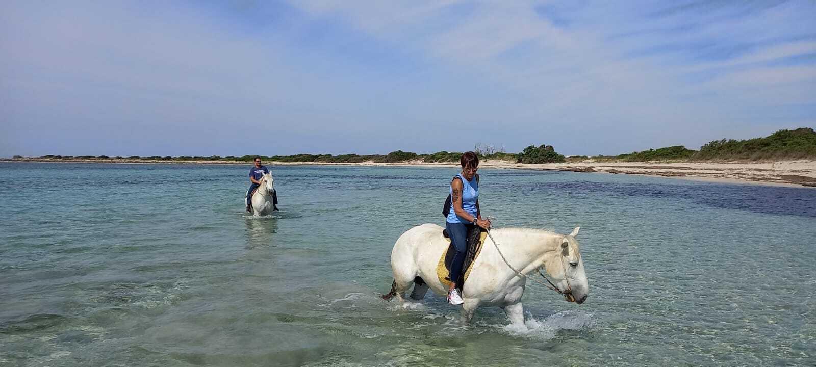 Escursione cavallo porto cesareo