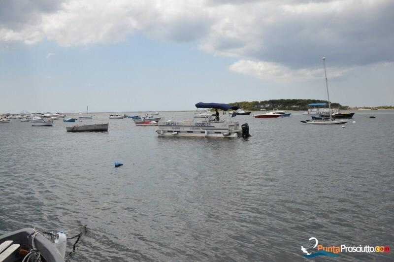 Escursioni in barca lola calipso escursioni porto cesareo 4 Ir