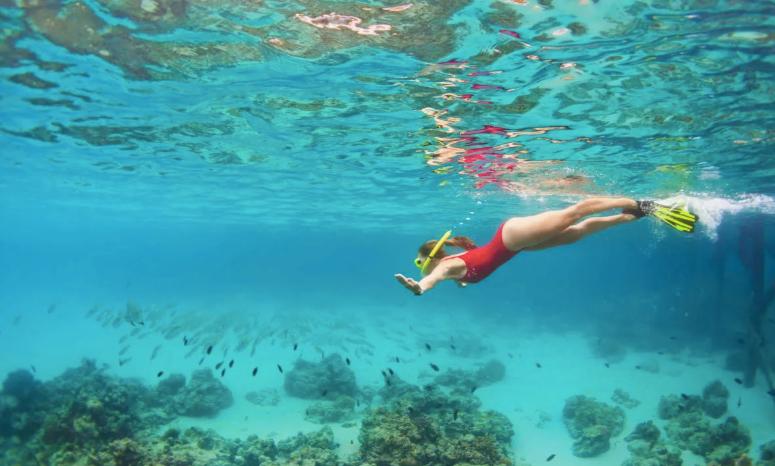 Immersioni presso Punta Prosciutto