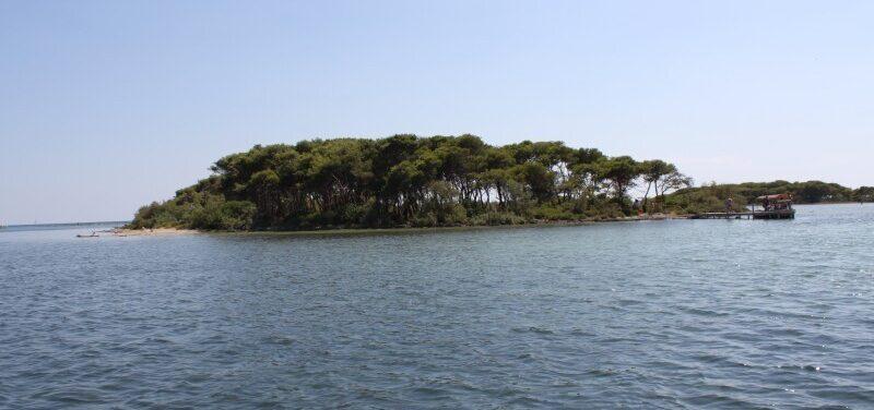 Isola isola grande o isola dei conigli 72 D