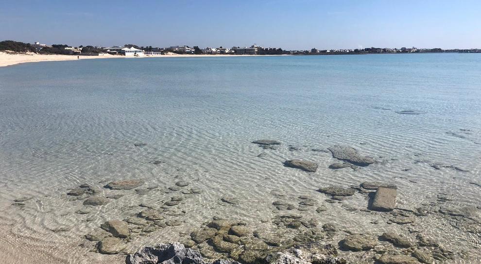 Acque chiare e cristalline e fondali digradanti dall'ambiente sub-tropicale caratterizzano il mare di Porto di Cesareo che lambisce 17 km di distese di sabbia bianca e finissima, basse scogliere, piccole penisole, paludi e isolotti, tra cui spicca l'Isola dei Conigli