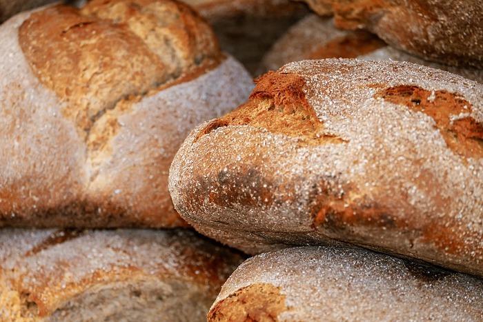 Mesagne coltivare e custodire la 3 a edizione dedicata al pane