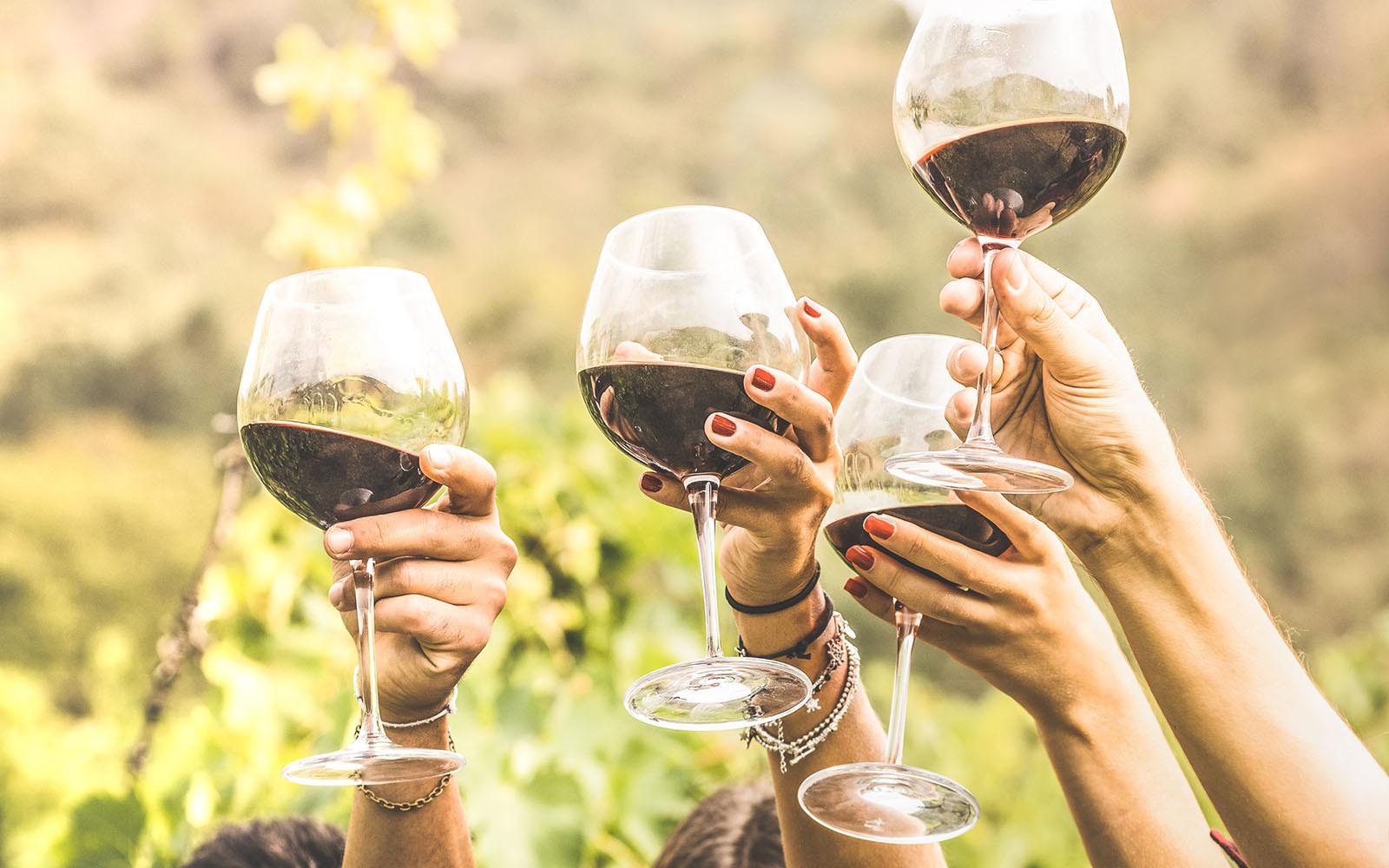 Il vino Salento Negroamaro