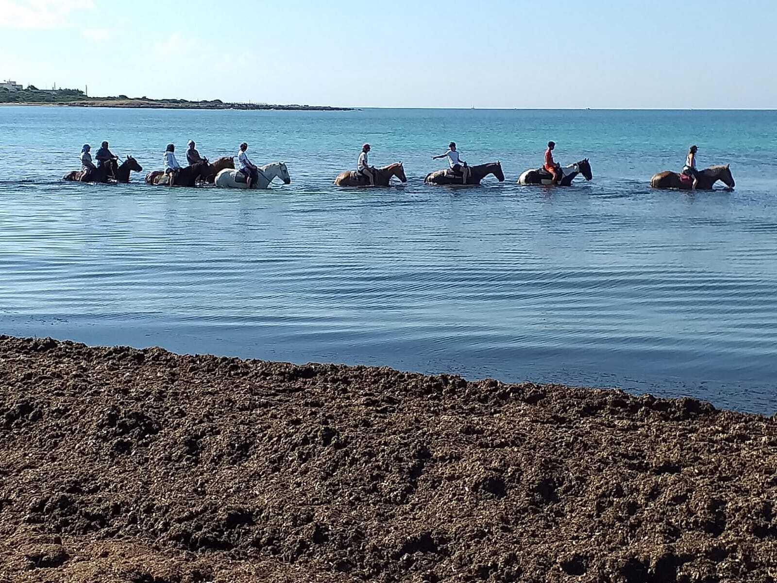Passeggiata cavallo mare punta prosciutto