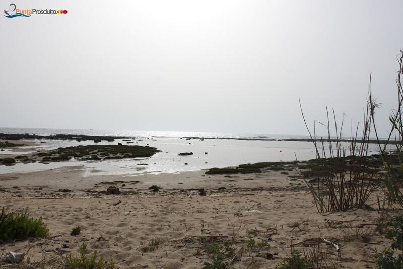 Penisola penisola della strea 39 U