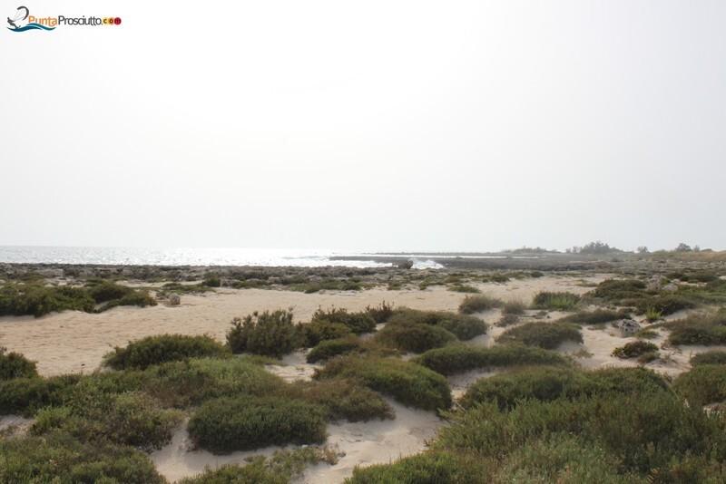 Penisola penisola della strea Gp6