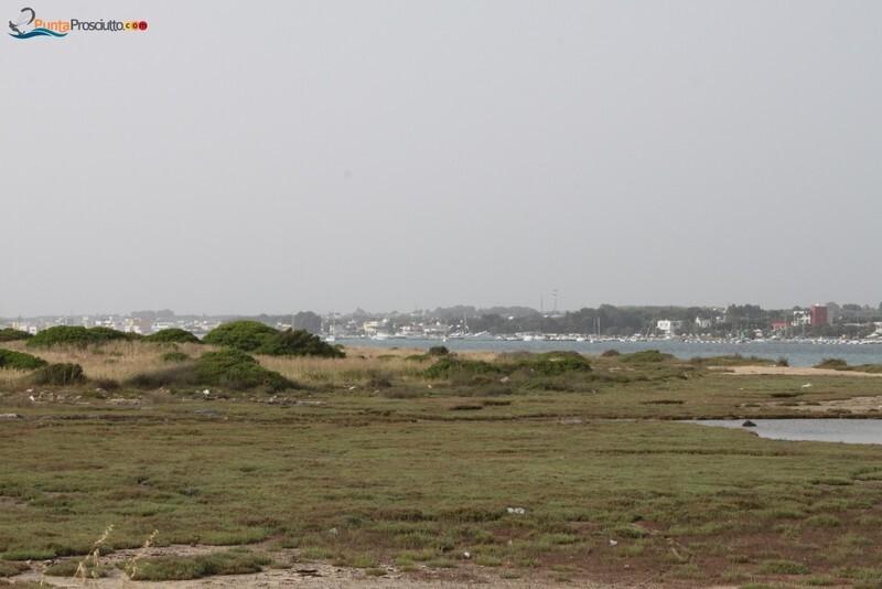 Penisola penisola della strea Jka