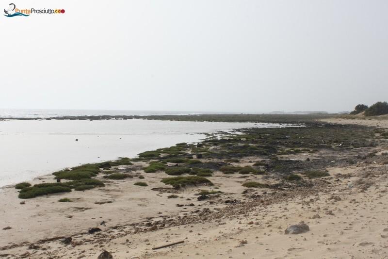 Penisola penisola della strea Wm9