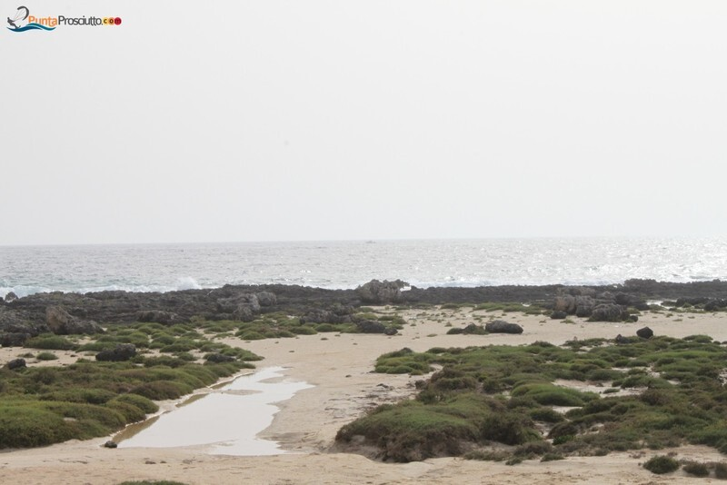 Penisola penisola della strea z XA