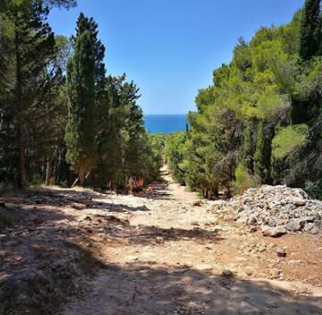Porto selvaggio sentiero spiaggia