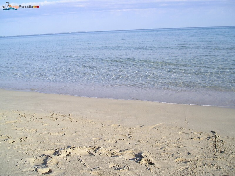 Spiaggia 4 gatti Zr5