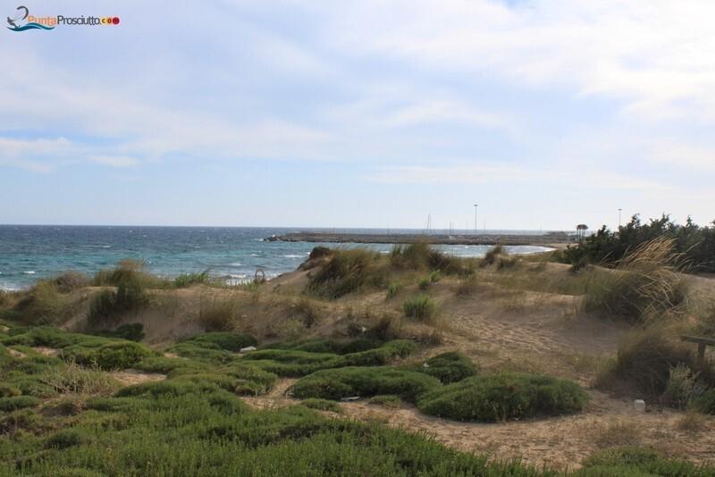 Spiaggia dune di campo marino 2 HI