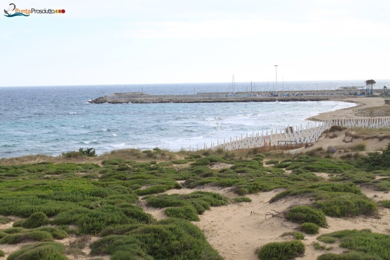 Spiaggia dune di campo marino ATR