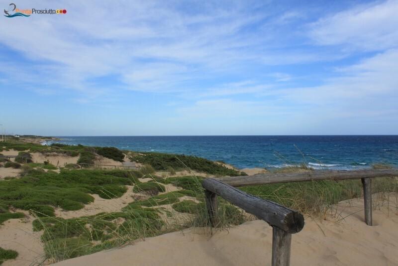 Spiaggia dune di campo marino k Eg