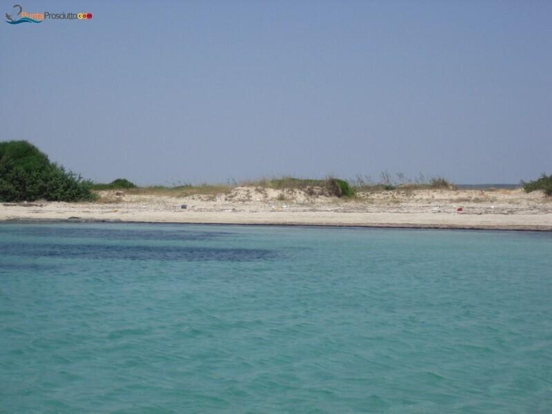 Spiaggia spiaggetta palude del conte Cv E