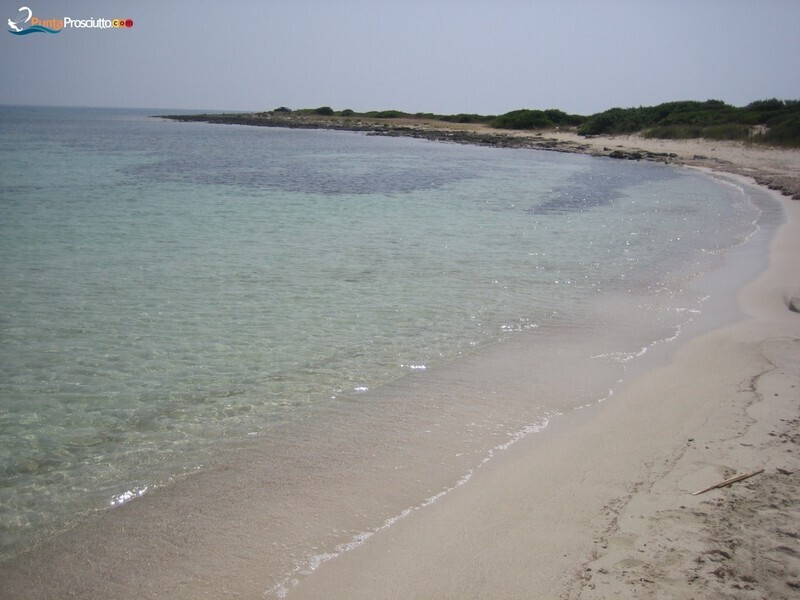 Spiaggia spiaggetta palude del conte Ms B