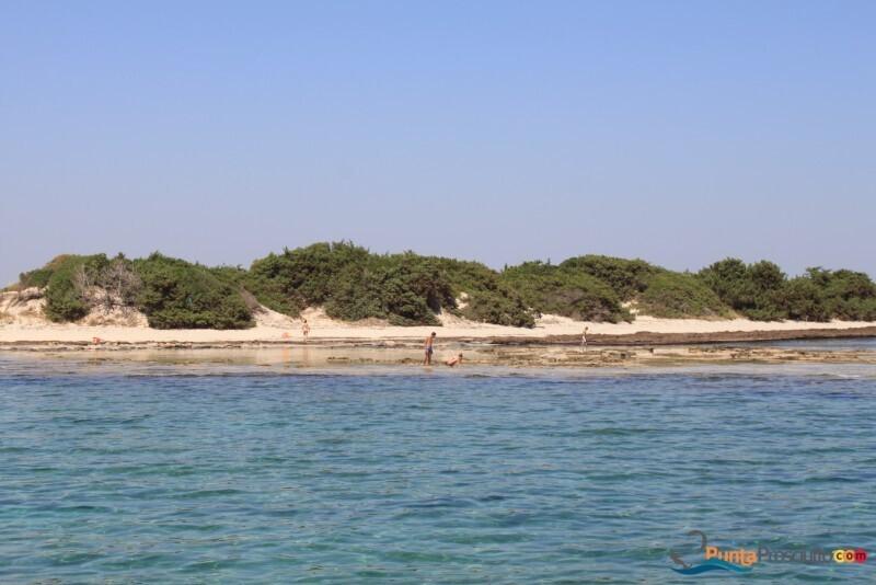 Spiaggia spiaggetta palude del conte P4 N