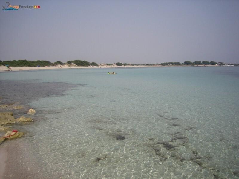Spiaggia spiaggetta palude del conte Qi H