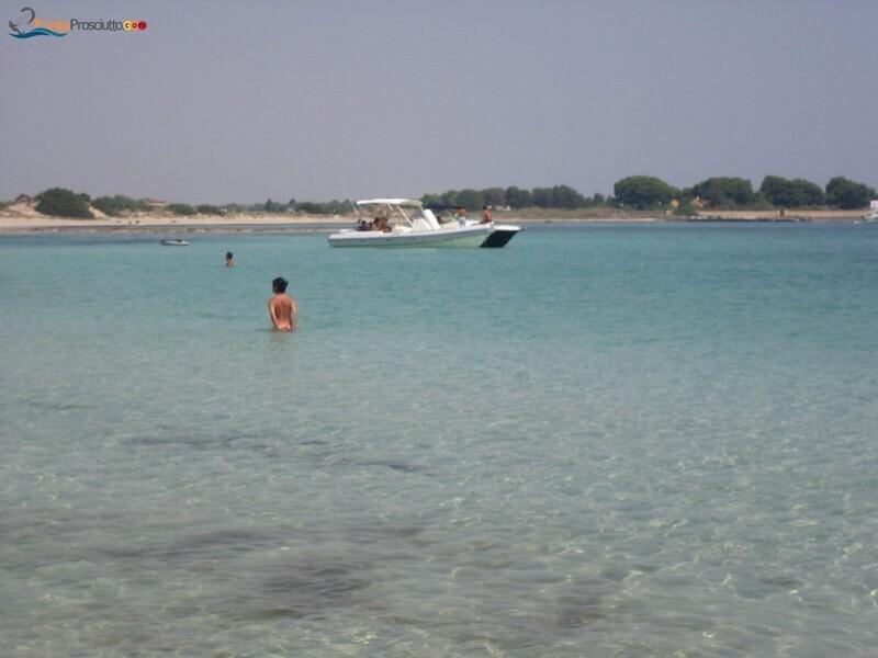 Spiaggia spiaggetta palude del conte T3d