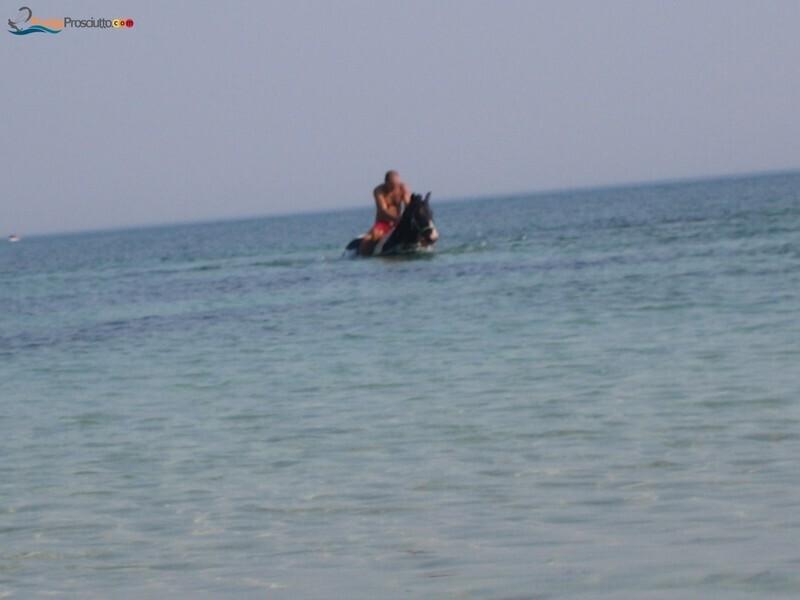 Spiaggia spiaggetta palude del conte Vk3