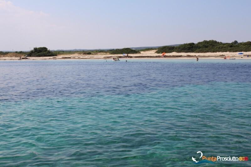 Spiaggia spiaggetta palude del conte g Wf