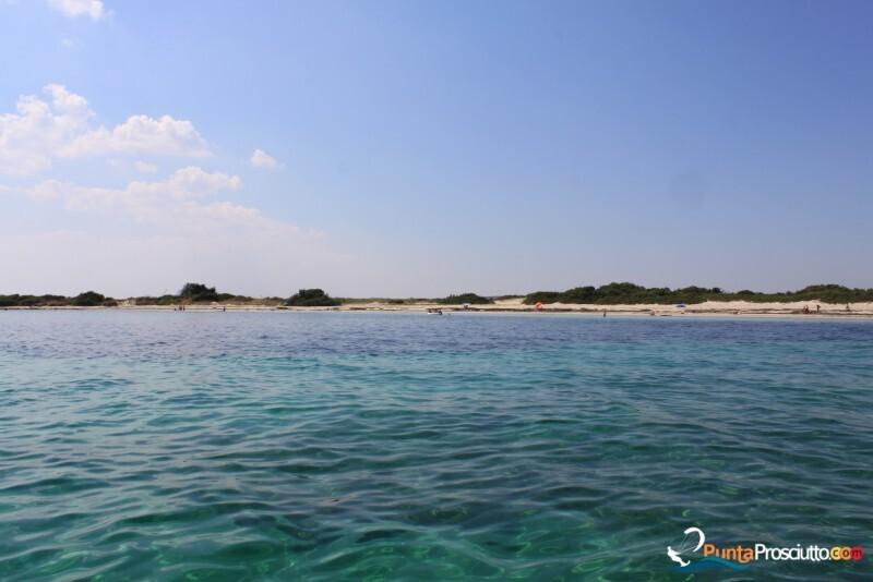 Spiaggia spiaggetta palude del conte mx7