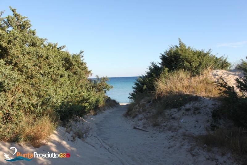Spiaggia spiaggia di torre chianca Aus
