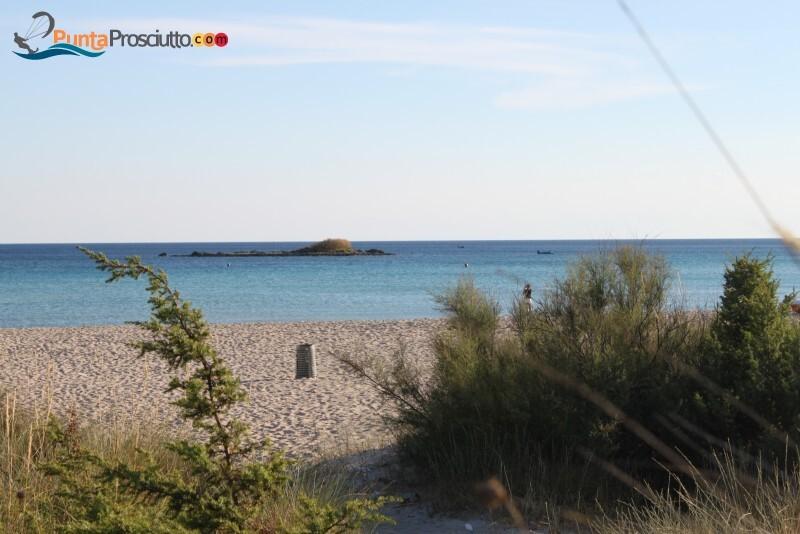 Spiaggia spiaggia di torre chianca Url