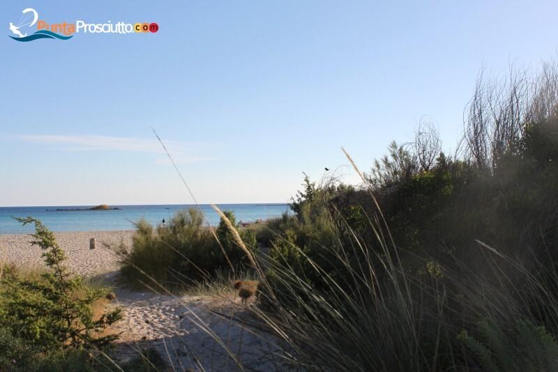 Spiaggia spiaggia di torre chianca iw E