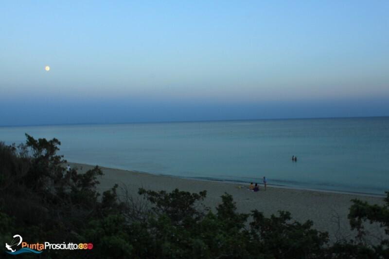 Spiaggia spiaggia riva degli angeli 1a X