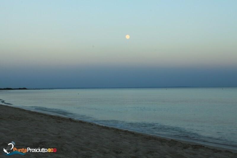 Spiaggia spiaggia riva degli angeli Rs U