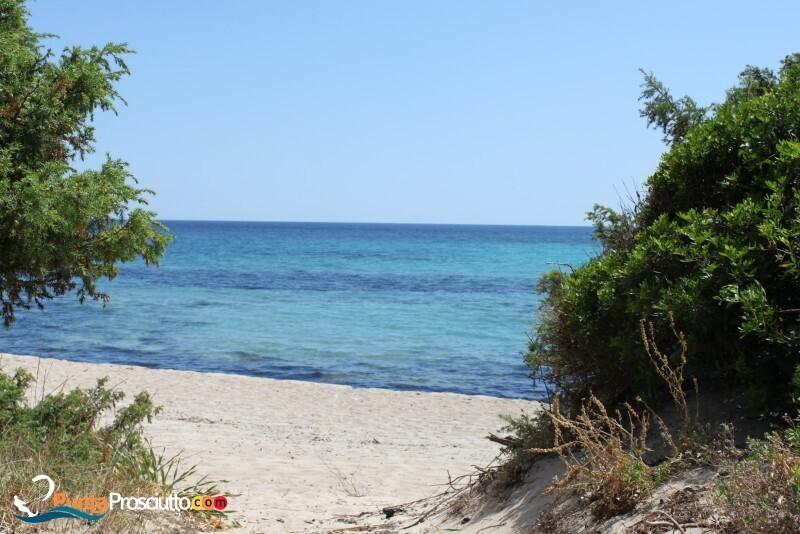 Spiaggia spiaggia riva degli angeli i4 K