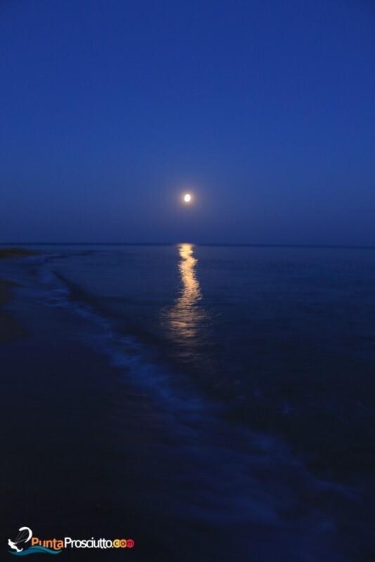 Spiaggia spiaggia san pietro in bevagna campomarino Xp1