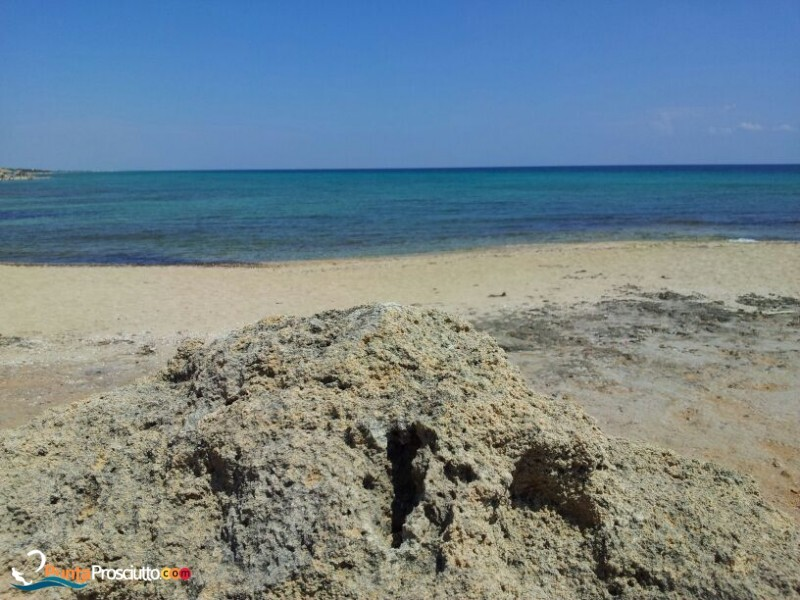 Spiaggia spiaggia zona torre borraco 8 Nl