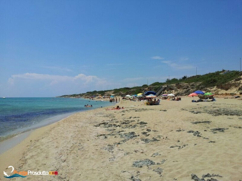 Spiaggia spiaggia zona torre borraco Z67