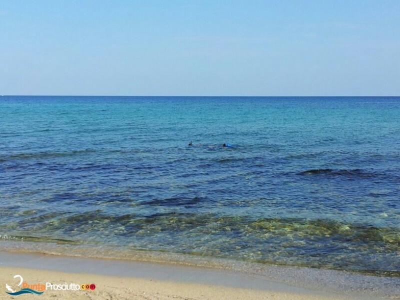 Spiaggia spiaggia zona torre borraco cnb