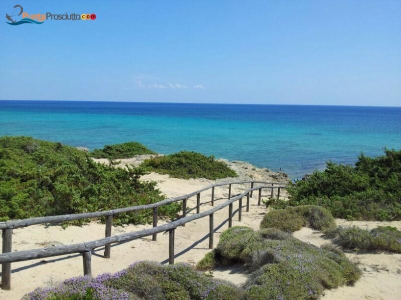 Spiaggia spiaggia zona torre borraco j Qk