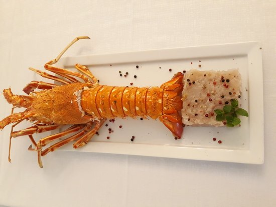 Tartare di aragosta ristorante domenico
