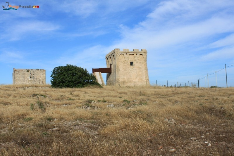 Torre torre borraco F9m