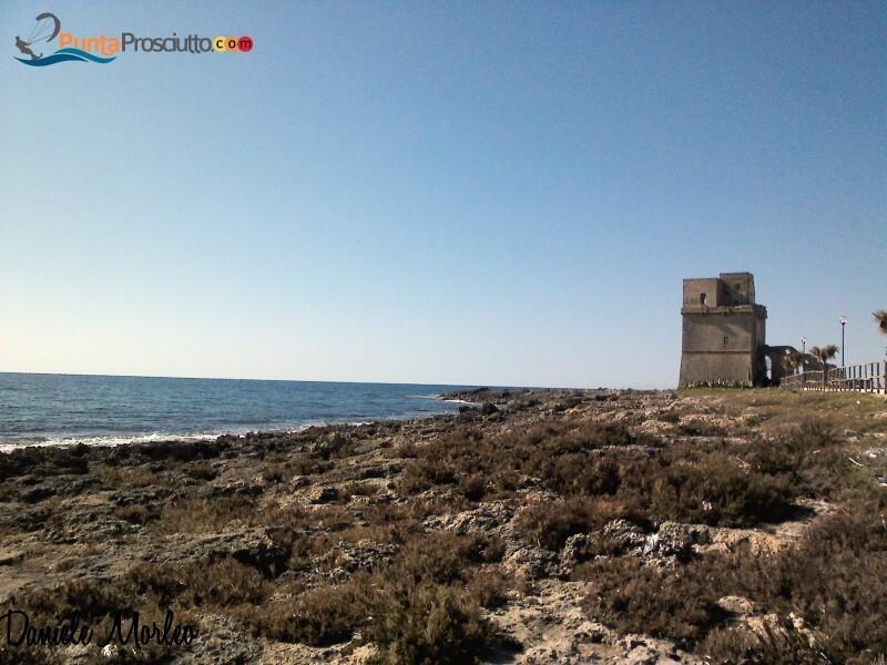 Torre torre di torre colimena beq