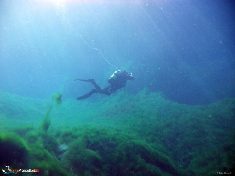 Zona per immersioni immersione orca diving